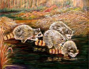 raccoons-at-sunrise-carol-allen-anfinsen