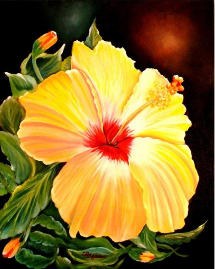 """Hibiscus Glory"" 16 x 20 oil on canvas (SOLD) Prints available"