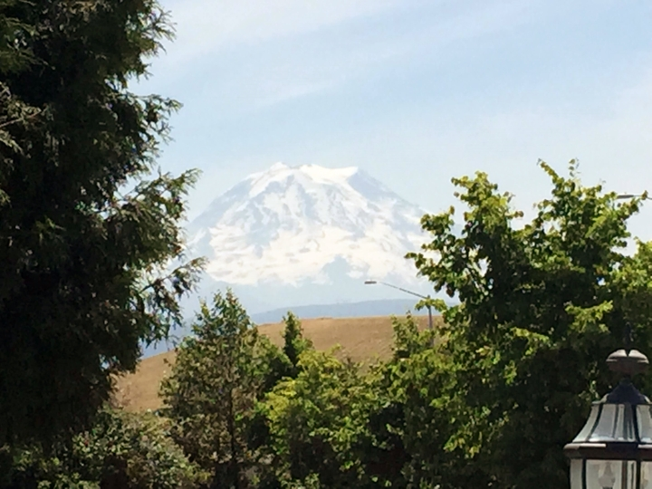 Mount Rainier at a distance.