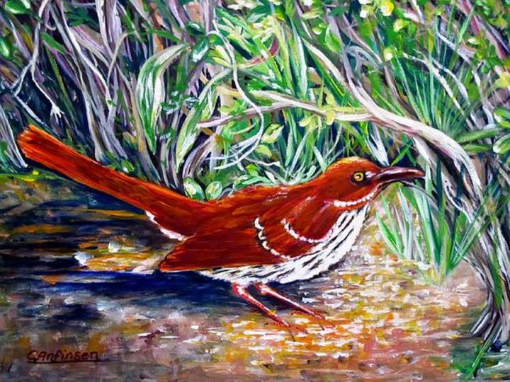 """Brown Thrasher"" 16x20 acrylic with overlapping paint on barn wood frame"