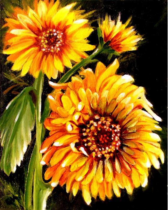 sunshine-carol-allen-anfinsen
